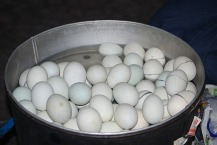 Balut eggs from Pateros