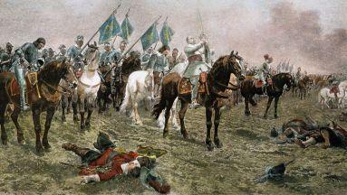 Swedish cavalry force
