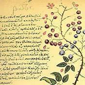 Byzantine medical manuscript
