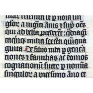 Medieval Latin language