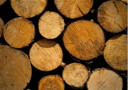 Scented wood