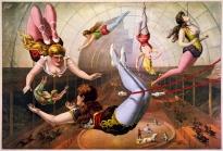 Trapeze acrobats illustration