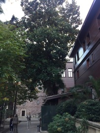 The Patriarchate- Leafy hidden spot in Istanbul