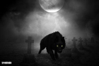 The dog of Black Death