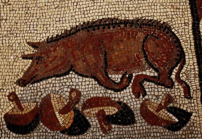 Roman mosaic of a pig