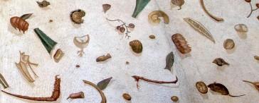 Mosaic of Roman leftovers