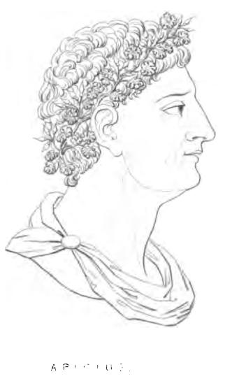 Marcus Gavius Apicius, 1st century gourmet