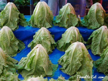 Cappadocian lettuce